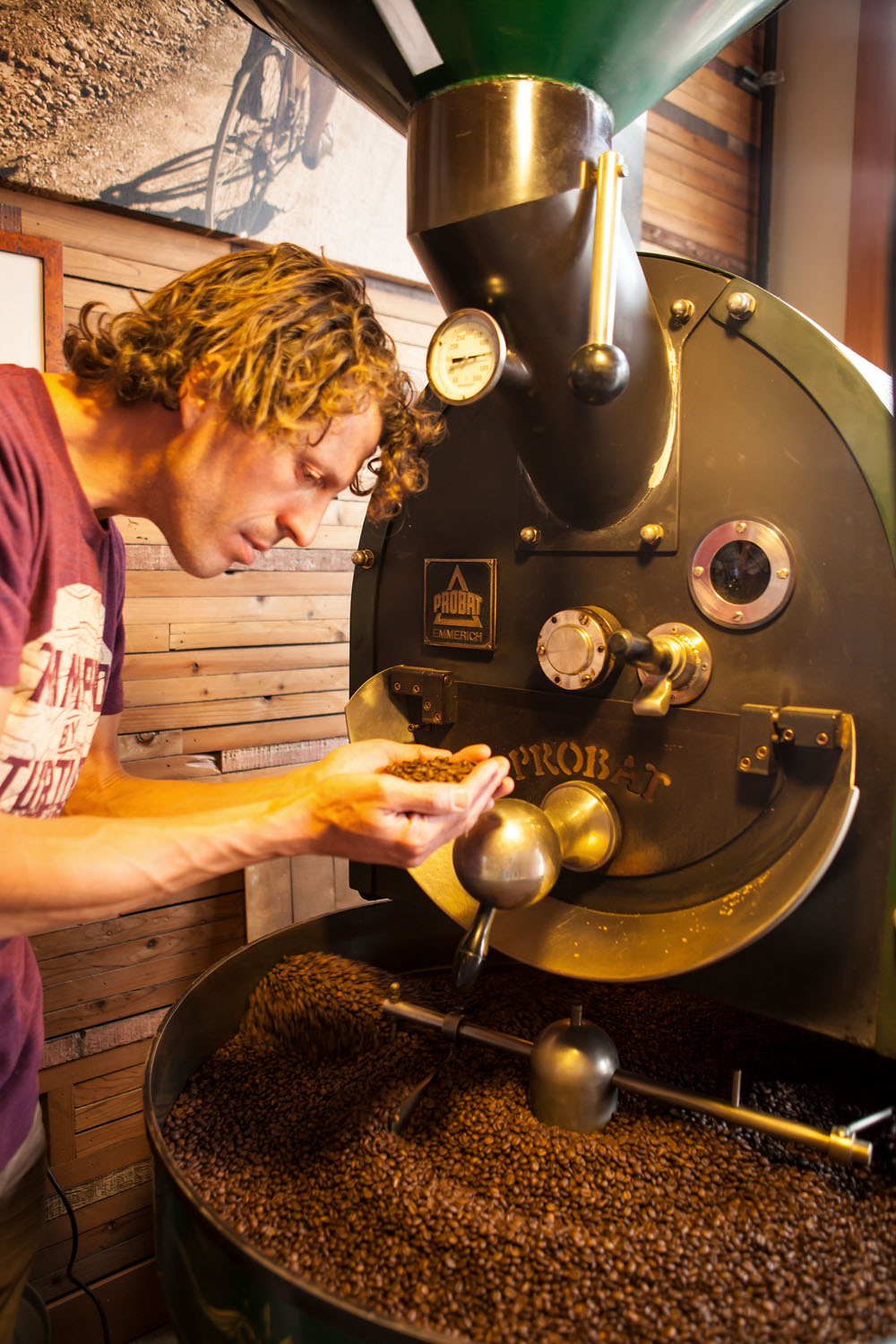 portrait of a barista checking roasted coffee beans