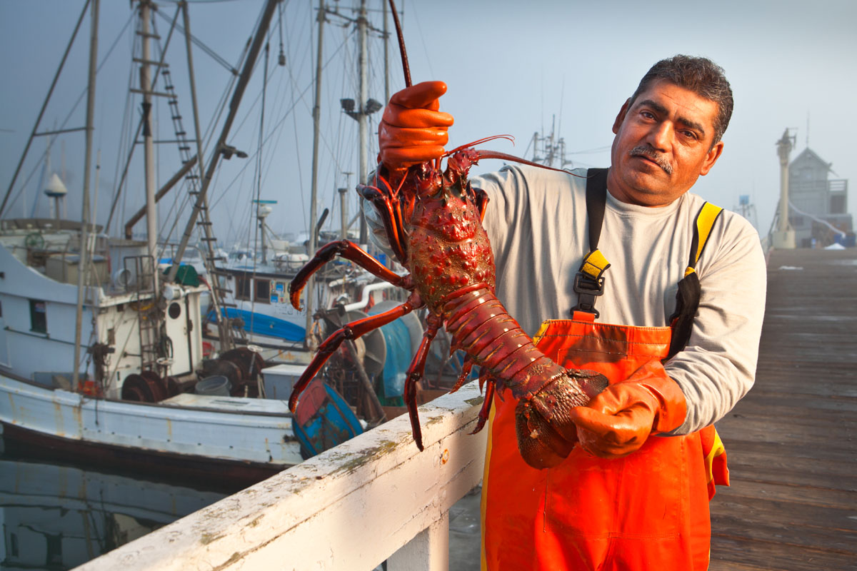 Focus stacked portrait of a lobster fisherman