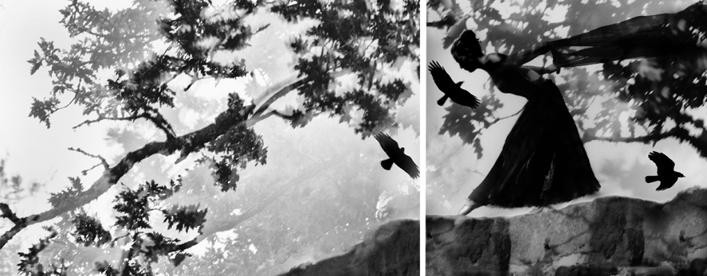 Dances_With_Crows