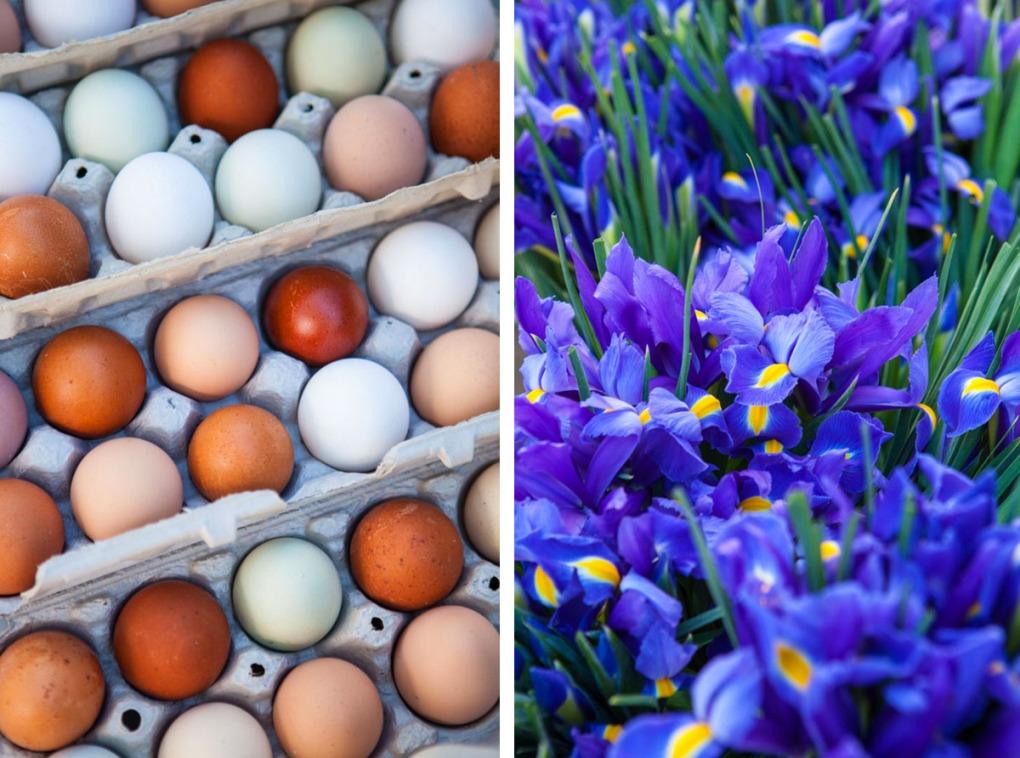 Eggs and iris for sale