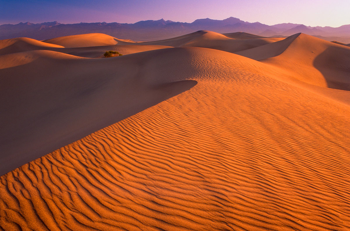 Death Valley sand dunes sidelit by the setting sun