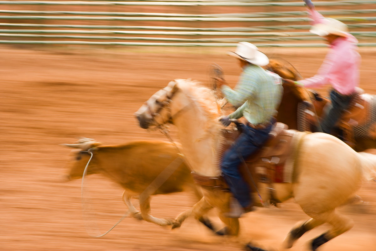 Panning produces recognizable team ropers and steer with a soft, blurred background