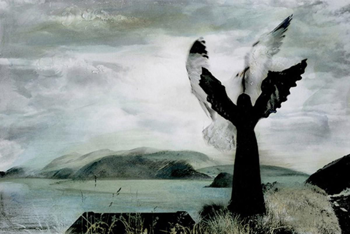 Phoenix Black & white print painted with pigmented encaustic wax