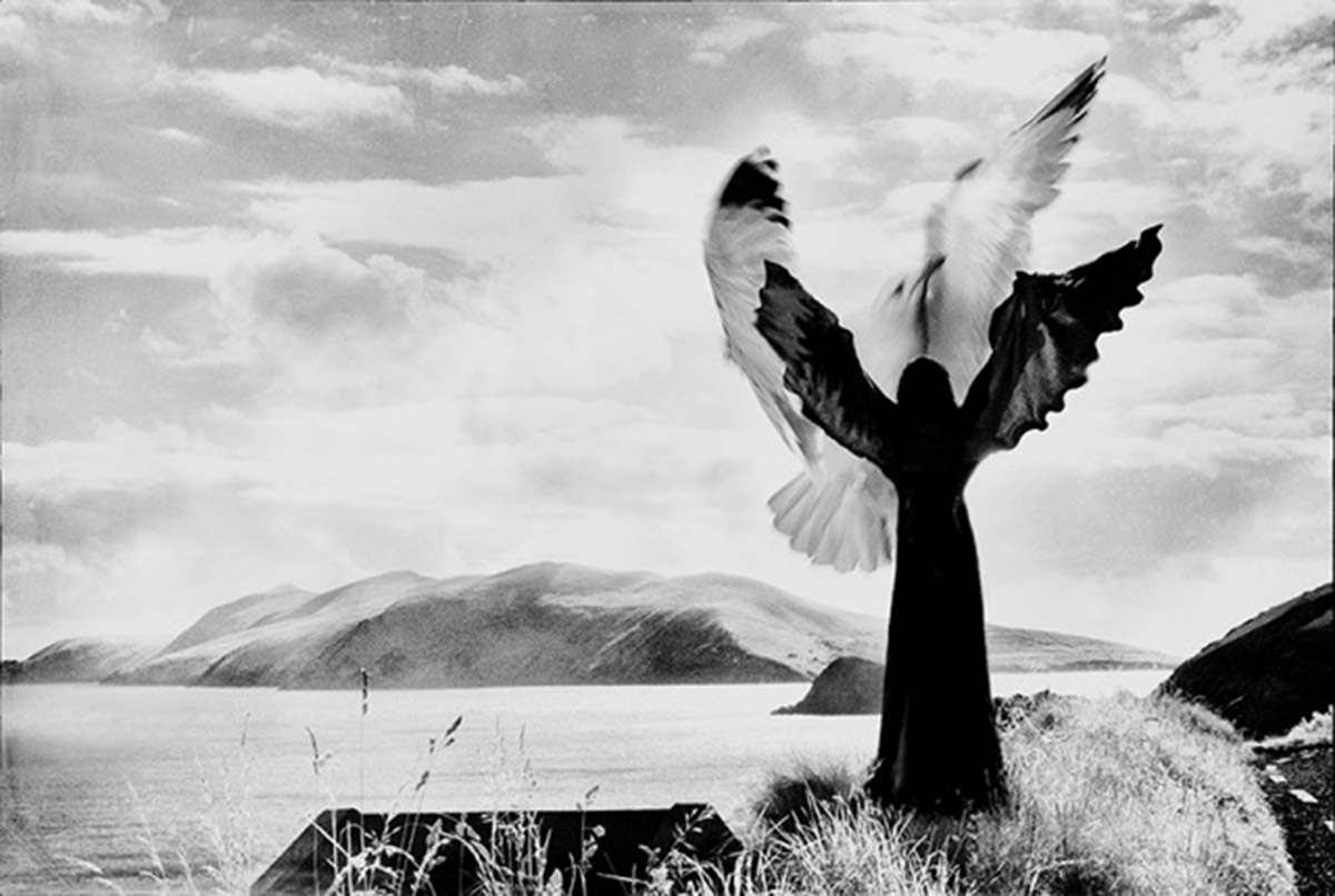 Phoenix Black & white print