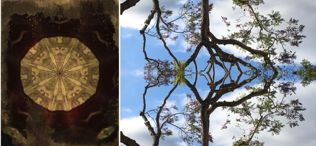 Tree_Web1