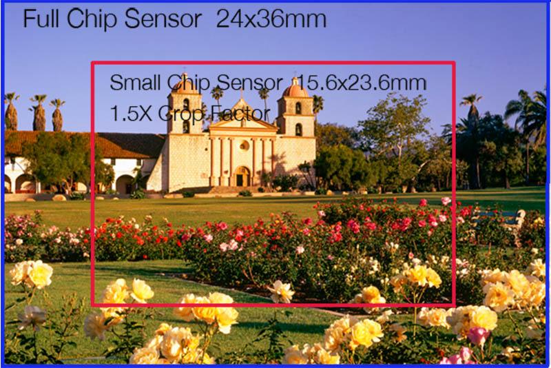 Sensor Size Crop Comparison