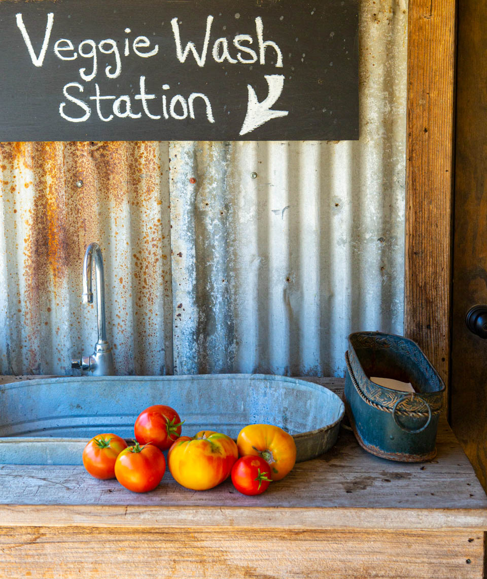 vegetable wash station, Folded Hills Farmstead, Santa Ynez Valley, California