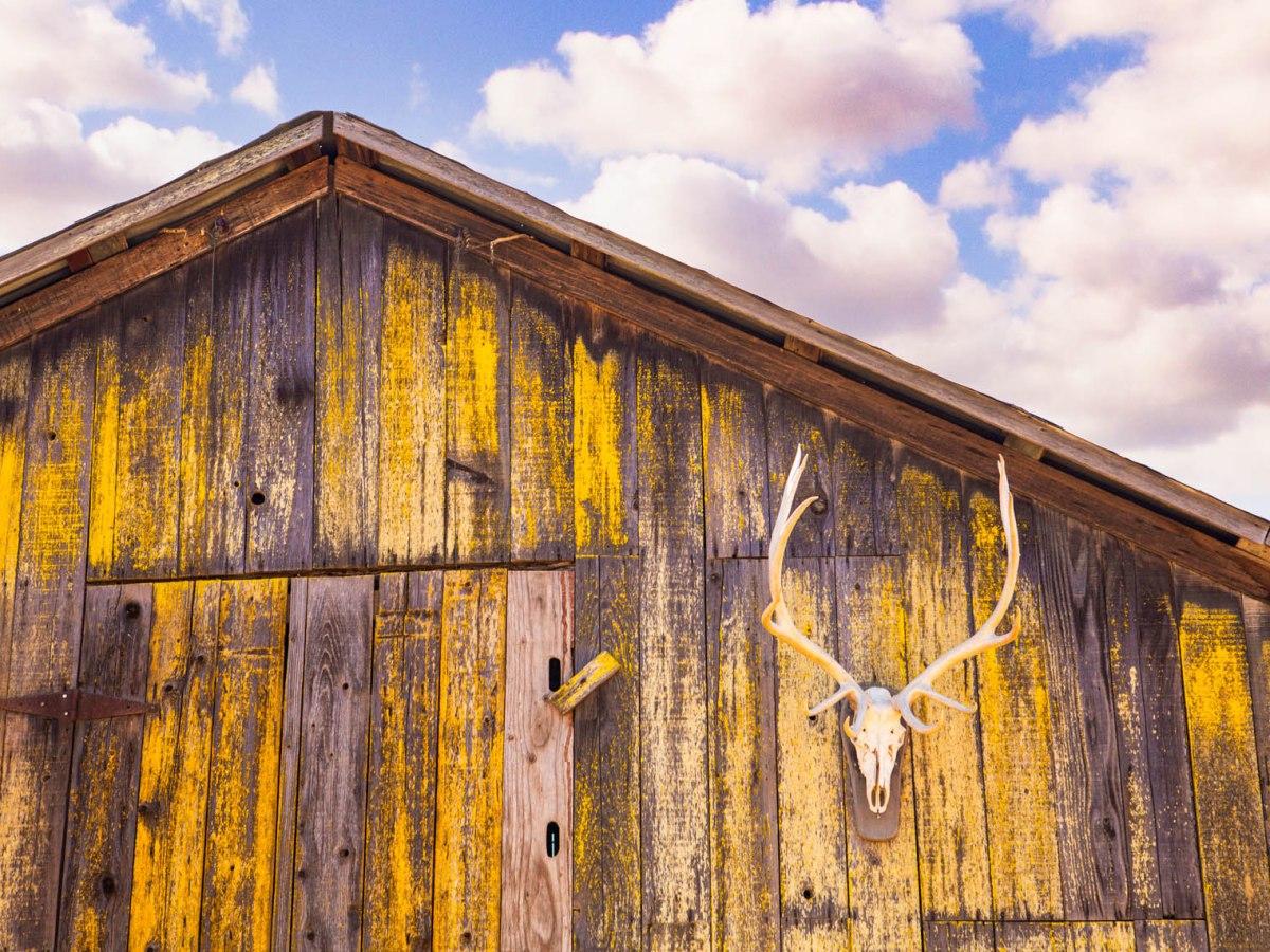 livestock barn, Folded Hills Farmstead, Santa Ynez Valley, California